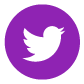social-icons-purple-twitter